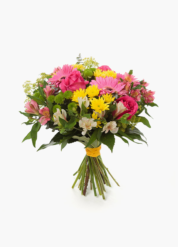 Apology Flowers